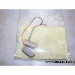 Sachet 2 charbons balais alternateur bosch 1917012354