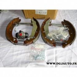 Kit frein arriere 203x39mm montage bendix E170040 pour citroen AX renault 19 R19